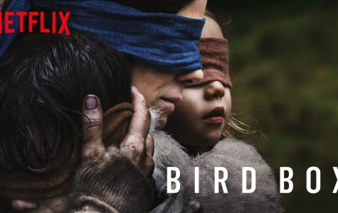 'Bird Box': A Popular Flop